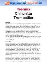 Chinchilla - Trampeltier.pdf