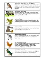 Redensart (Arbeitsblatt) in der Grundschule - tierische Redensarten ...