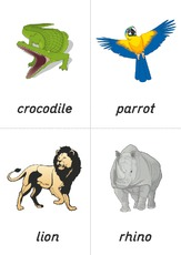 flashcard - zoo 05.pdf