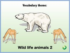 Wildlife animals 2.zip