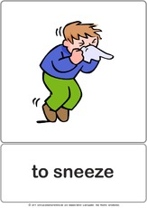 Bildkarte - to sneeze.pdf