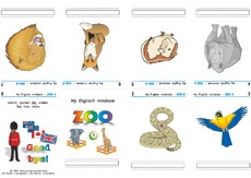 folding-book_zoo_co_3.pdf