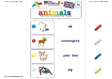 Klammerkarten-animals_14.pdf