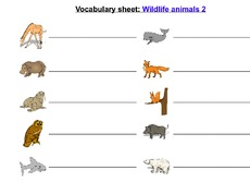 wildlife animals 2.pdf