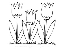 Ausmalbilder Blumen Frühling Jahreszeiten Hus Klasse 1