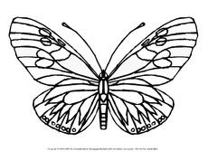 Ausmalbild-Schmetterling 1 - Schmetterlinge - Tiere zum Ausmalen ...