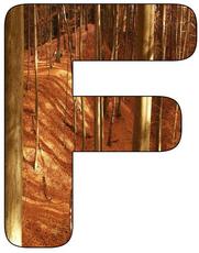 herbst puzzle apfelbaum bastelvorlagen herbst. Black Bedroom Furniture Sets. Home Design Ideas