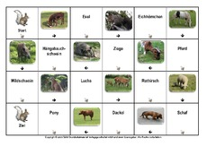 Tier-Domino in der Grundschule - Tiere - HuS Klasse 1 ...