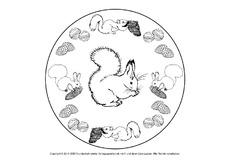 Mandalas Eichhörnchen Eichhörnchen Werkstatt Tiere Hus Klasse