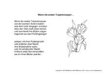Gedichte die tulpe grundschule