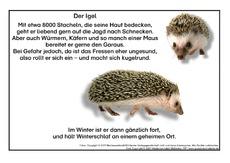 Igel In Der Grundschule Gedichte Herbst Jahreszeiten