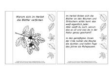 mini b cher lesetexte lapbook herbst herbst jahreszeiten hus klasse 2. Black Bedroom Furniture Sets. Home Design Ideas