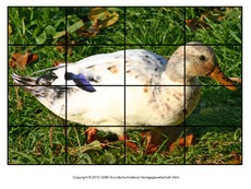 Puzzle-Ente-Lilly-1.pdf