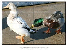 Puzzle-Ente-Lilly-2.pdf