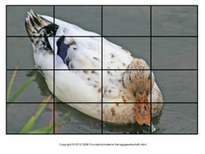 Puzzle-Ente-Lilly-3.pdf
