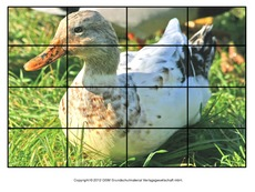Puzzle-Ente-Lilly-4.pdf