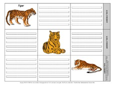 Leporello-Tiger-2-1-2.pdf