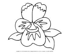 Ausmalbild Fruhlingsbluher Arbeitsblatt In Der Grundschule