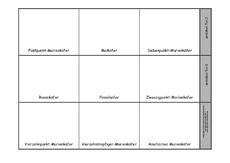 Leporello-Käfer-2.pdf