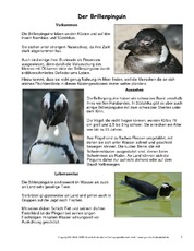 Brillenpinguin-Steckbrief.pdf
