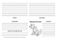Faltbuch in der grundschule hus unterrichtsmaterial - Feldhase steckbrief ...