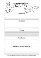 Rotfuchs Steckbrief Tiersteckbriefe Lesen Steckbriefe Tiere