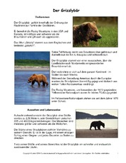 Grizzly-Steckbrief.pdf