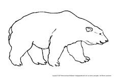Bär In Der Grundschule Tiere Gemischt Tiere Zum Ausmalen
