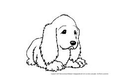 Hund Arbeitsblatt In Der Grundschule Tiere Zum Ausmalen